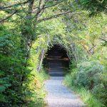San Josef Bay Trail, Vancouver Island, BC