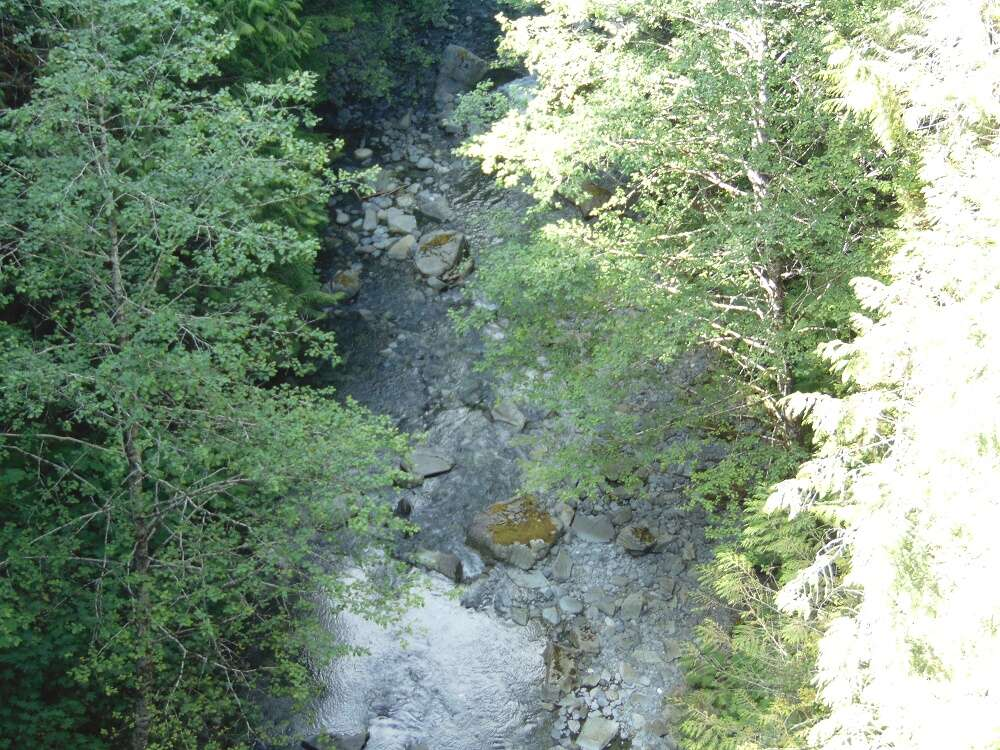 Tlatlos Creek, Vancouver Island, BC